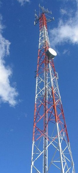 Para abastecer a demanda, Brasil precisará de 10 mil antenas de celular (Foto: Xcarlitox/WikiCommons)